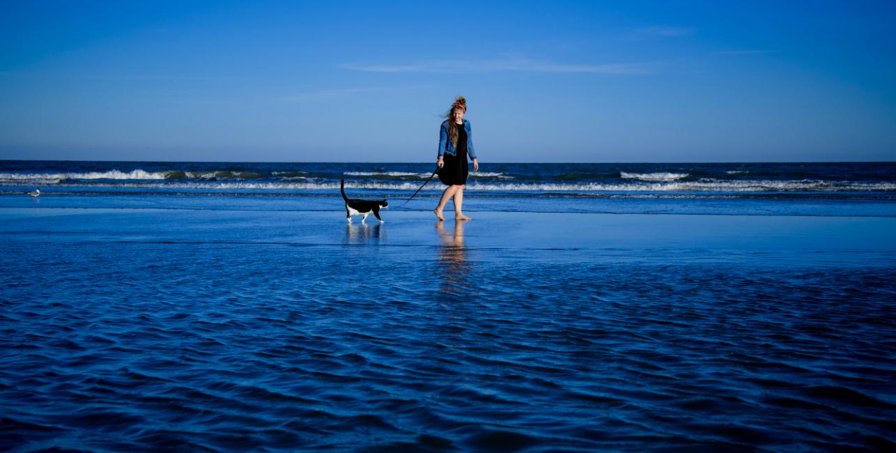 Catwalk on the Beach